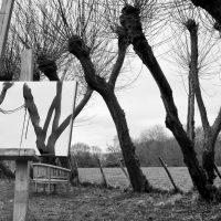 Blurring the boundaries by John Brockliss